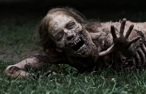 What would really happen in a Hollywood-style zombie apocalypse?