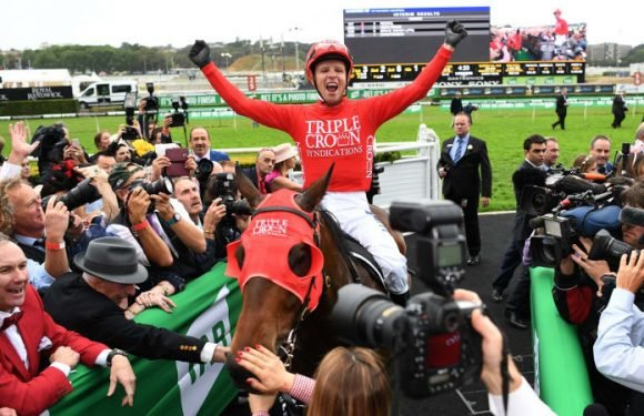 Redzel back to where it all began in the Doomben 10,000