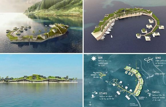 World's first floating nation to launch by 2022