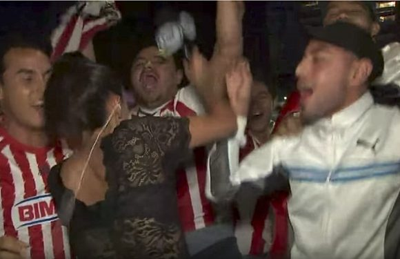 Football fan GROPES sports reporter–She gives him what he deserves!!!