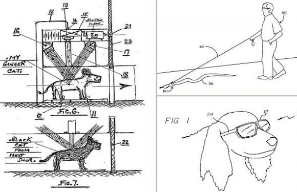 'Pet-tech' of the future? Patents reveal bizarre inventions