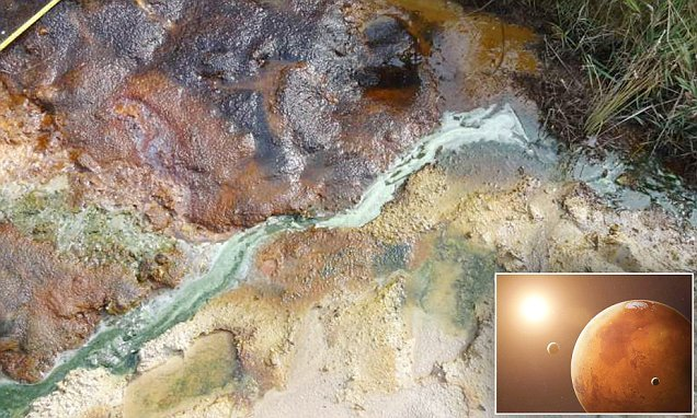 Dorset stream shows there are 12,000 pools of organic matter on Mars