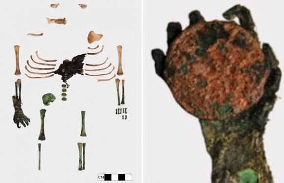 Mystery of the 150-year-old remains of a baby with one mummified hand