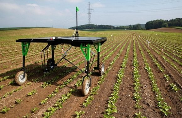 The robot killer than can take out weeds with a jet blast of chemical