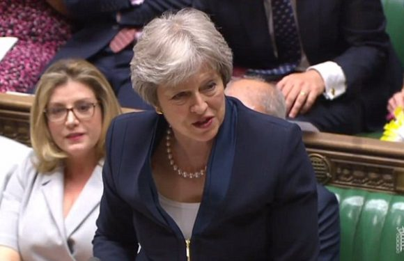 PM lays down the gauntlet to Tory Brexiteers and Remainers
