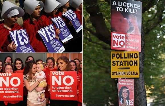 Fight for Ireland's undecided as abortion referendum enters last hours