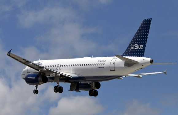 JetBlue's SPF Sale Can Get You 30 Percent Off Flights To Bermuda, So Get Packing