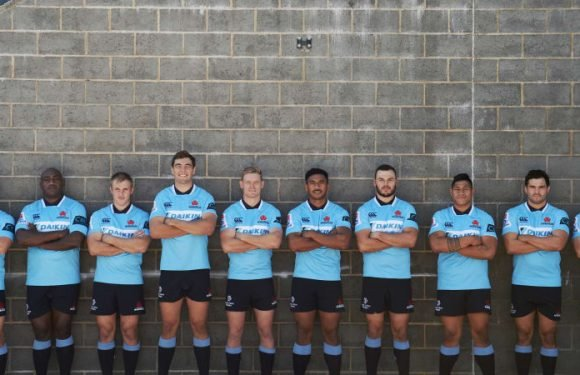 Waratahs not treating first Kiwi hurdle any differently, says Clark
