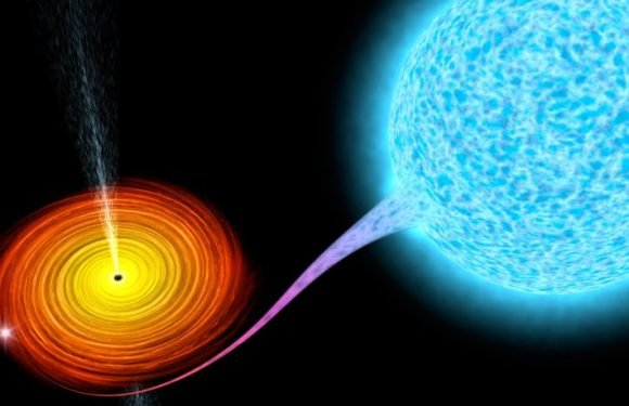 New Model Reveals What Goes On When A Massive Black Hole Gobbles Up A Star