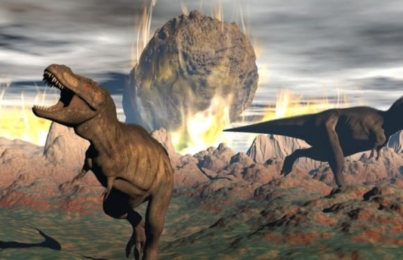 Life Returned To The Chicxulub Crater A Mere Decade After The Dinosaurs Went Extinct, Reveals New Study