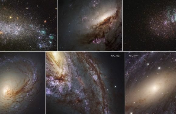 Largest Catalog Of Neighboring Galaxies Unveiled Today As Part Of The LEGUS Survey
