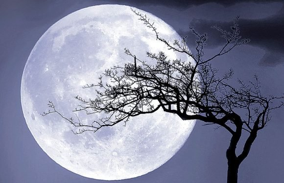 Spectacular May full moon will rise tonight; here's why it's called Flower Moon