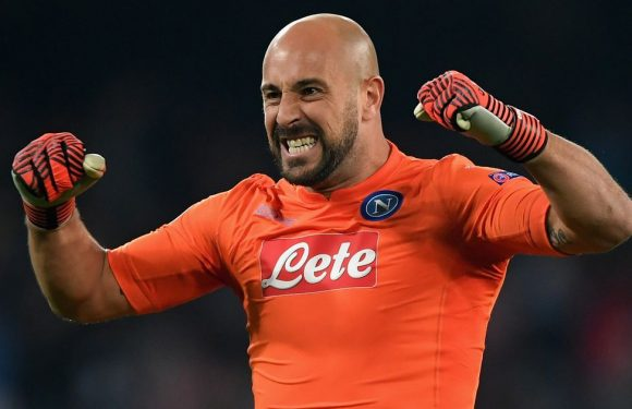 Pepe Reina is wanted by Liverpool – but not to be Anfield No.1