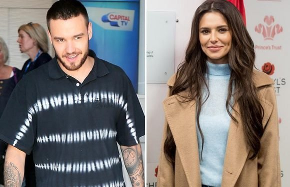 Liam Payne interrupts Cheryl as she's in the LOO during live interview