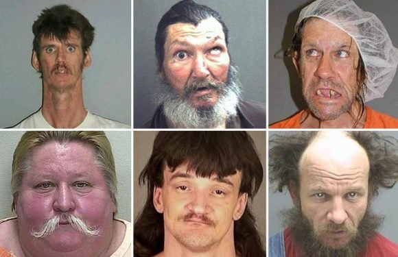 Hilarious mugshots show dopey criminals with ridiculous haircuts and even funnier facial expressions moments after being nicked