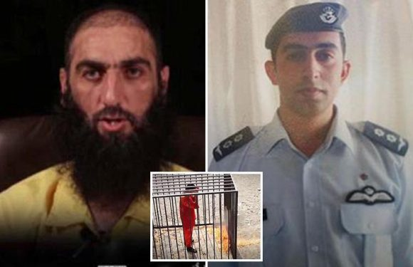 ISIS terror chief who burned Jordanian pilot to death in chilling 2015 execution video is captured in Iraq
