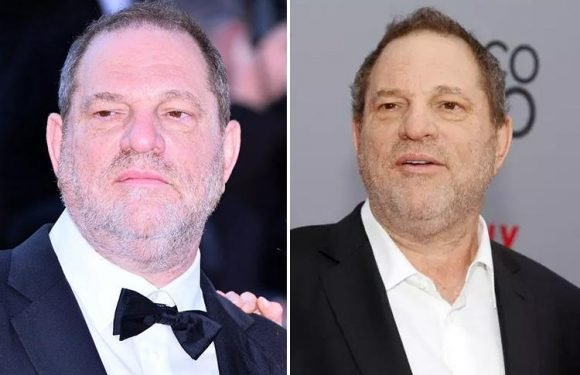 Harvey Weinstein 'to turn himself in to cops on sex crime charges in New York'