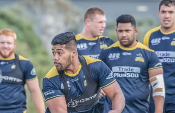 Brumbies could be searching for fifth-string hooker to face Sunwolves