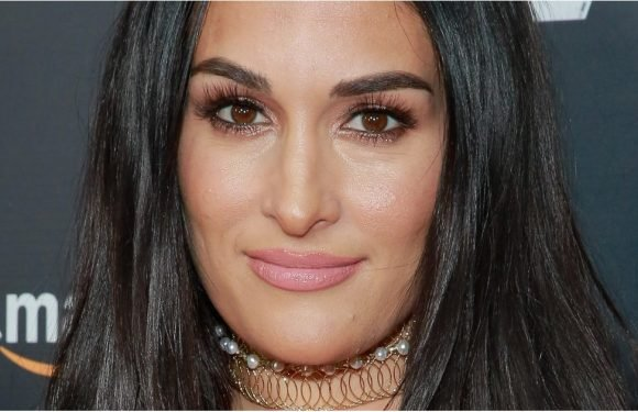 """Nikki Bella Admits She and John Cena Didn't Spend Much Time Together: """"I'm Alone a Lot"""""""