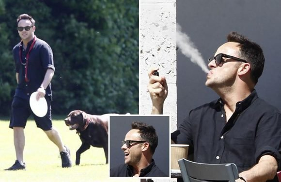 Ant McPartlin grins and puffs on a vape as he's reunited with his beloved dog Hurley after leaving rehab