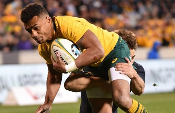 Genia '100 per cent' for Ireland Tests as Phipps looks to press claim