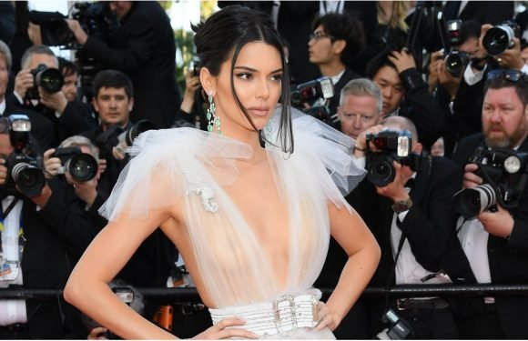 Kendall Jenner's Gown Is So Goddamn Sheer, It's Like She's Not Wearing Anything at All