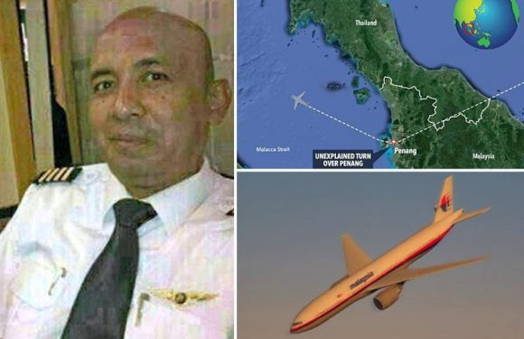 MH370 pilot 'deliberately avoided radar for HOURS to make sure doomed plane was never found in suicidal act'