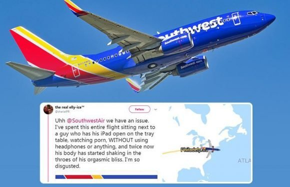 Southwest Airlines passenger horrified as perv masturbates and watches porn on his iPad the entire flight