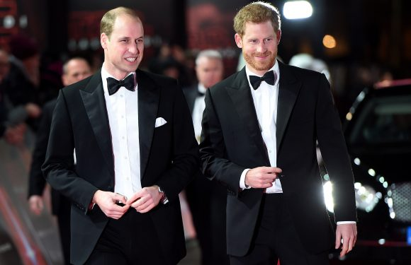 Prince Harry has asked Prince William to be his best man at royal wedding