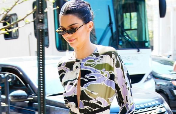 Kendall Jenner Makes a Statement in a Multi-Colored Longchamp Midi Dress