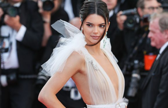 Kendall Jenner Is Being Accused of Photoshopping a Topless Pic on Instagram