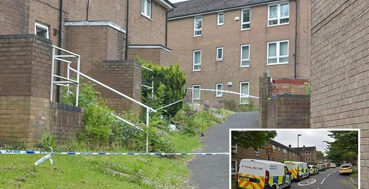 Sheffield stabbing leaves teen boy dead as girl, 17, and man are arrested on suspicion of murder