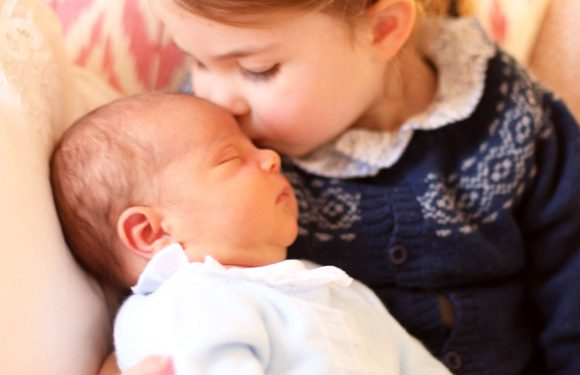 Can You Spot the Sweet Hand-Me-Downs in the New Photos of Prince Louis and Princess Charlotte?