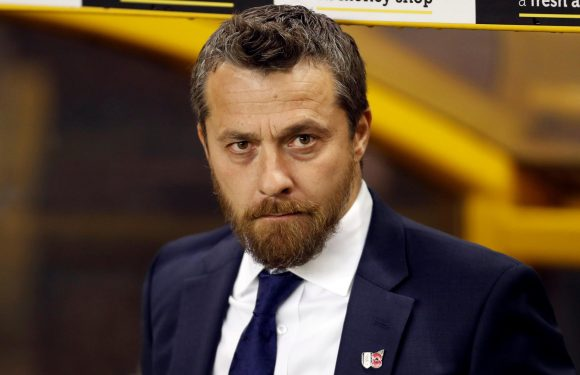 Fulham chief Slavisa Jokanovic says his pass masters might park the bus at Wembley against Aston Villa in the Championship play-off final