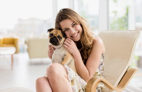 Dogs make owners happier because they are more affectionate