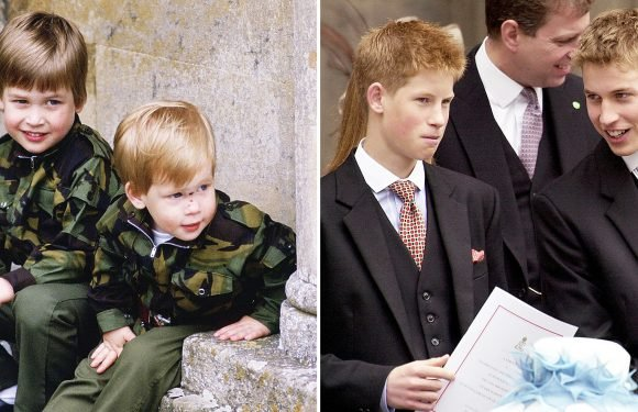 Prince William and Prince Harry's Cutest Moments