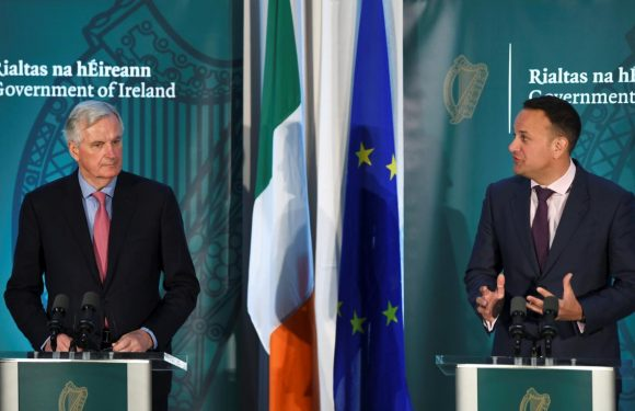 Barnier says rapid EU-UK progress needed on Irish border