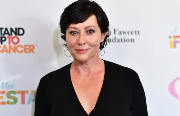 Shannen Doherty undergoes reconstructive surgery after breast cancer battle