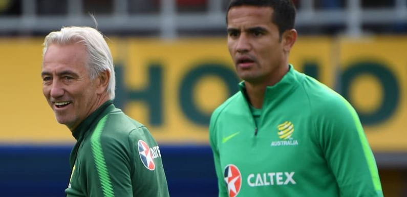 Cahill's 'priceless' chance to join the immortals of the game in Russia