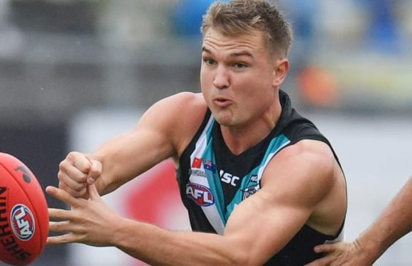 Ollie Wines weighing up next contract decision