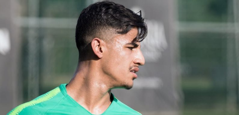 Daniel Arzani to rescue as Socceroos struggle to beat Hungary