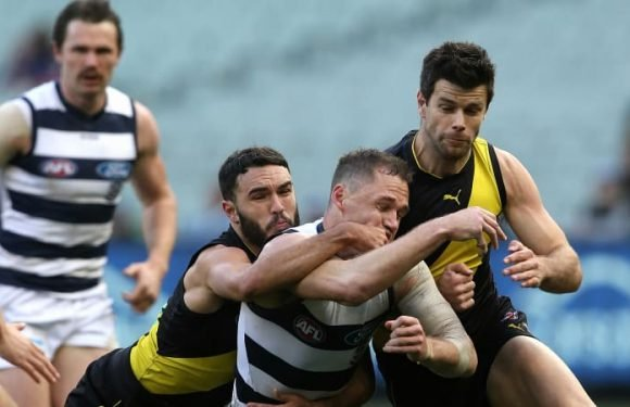 Cats can't go distance as Tigers make it sweet 16 at the 'G