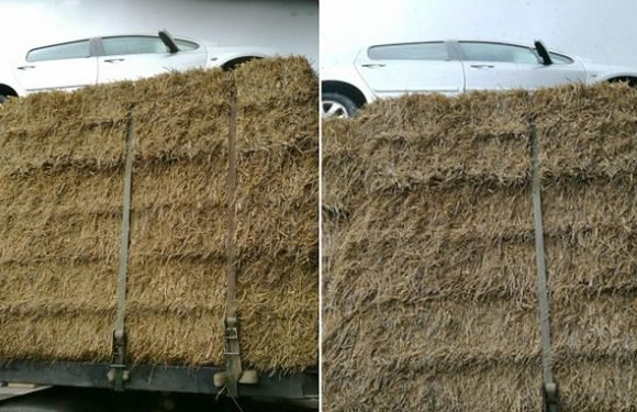 Lorry laden with hay has a CAR balanced on top as it goes through town