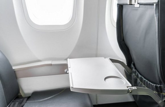 Plane germs are 'much like those founds in homes and offices'
