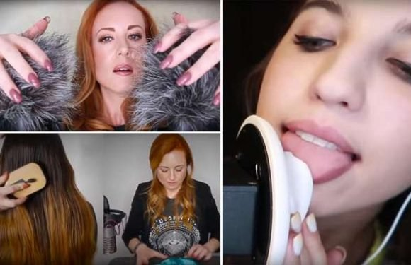 Does watching this video of ear licking give you a 'brain orgasm'?