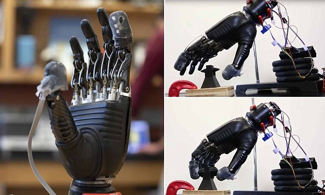 Prosthetic that can feel both pain could help amputees avoid injury