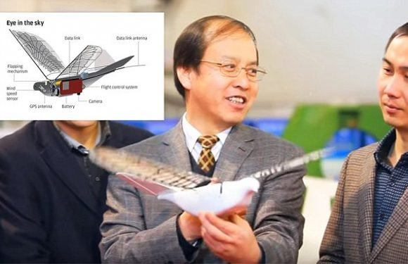 China is secretly developing an army of robot SPY doves