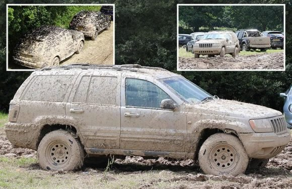 Gatwick airport meet and greet website used photos of hospital car park 400 miles away in SCOTLAND as vehicles dumped in muddy field