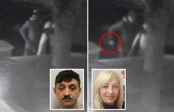 Horrific CCTV footage caught jealous ex launch frenzied knife attack on mum Elisabeta Lacatusu in which she was knifed 19 times