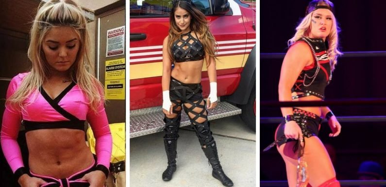 20 Newer WWE Female Superstars Who Could Be The NXT Big Thing